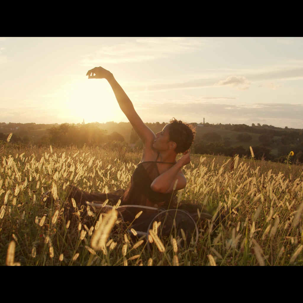 Laura Prince champ de blé couché de soleil